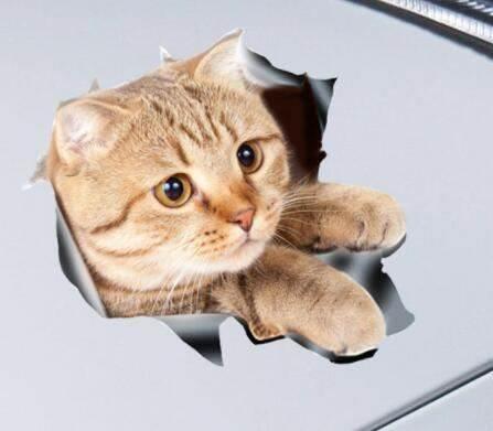 GFT Nálepka mačka 13 x 18 cm