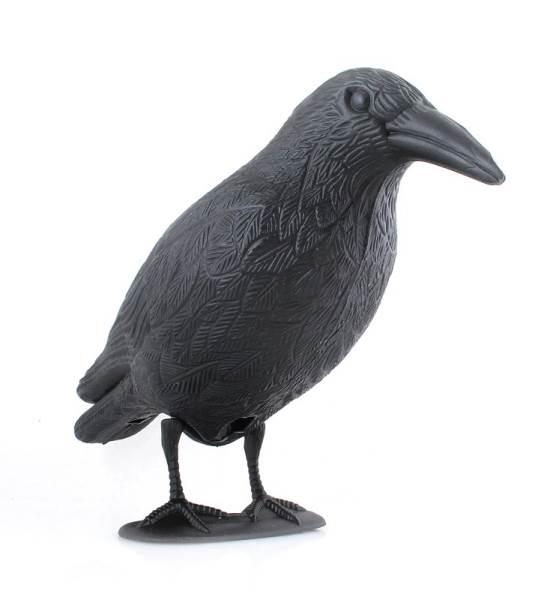 ISO Odpudzovač holubov a vtákov havran