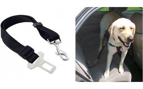 ISO Bezpečnostní Pás pro psa do Auta 25mm x 44- 70cm1