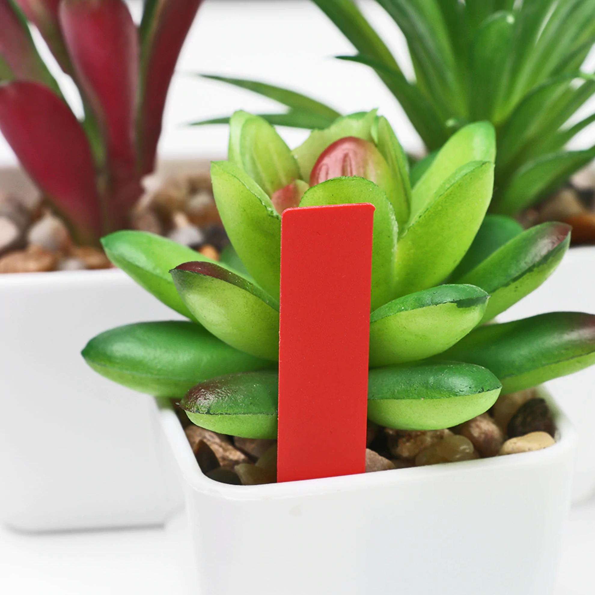 GFT Popisovacie štítky k rastlinám - červená