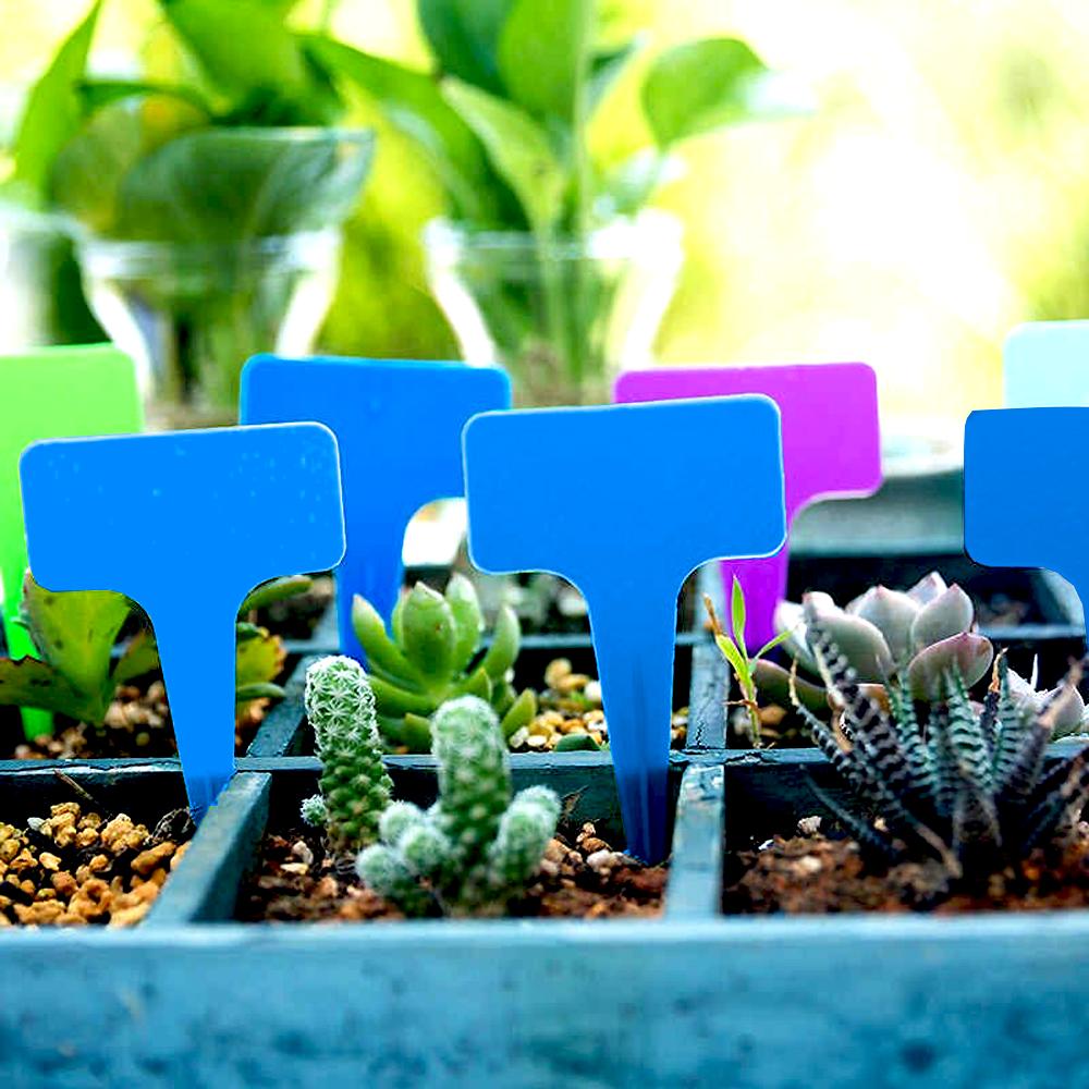 GFT Štítky k rastlinám - modrá